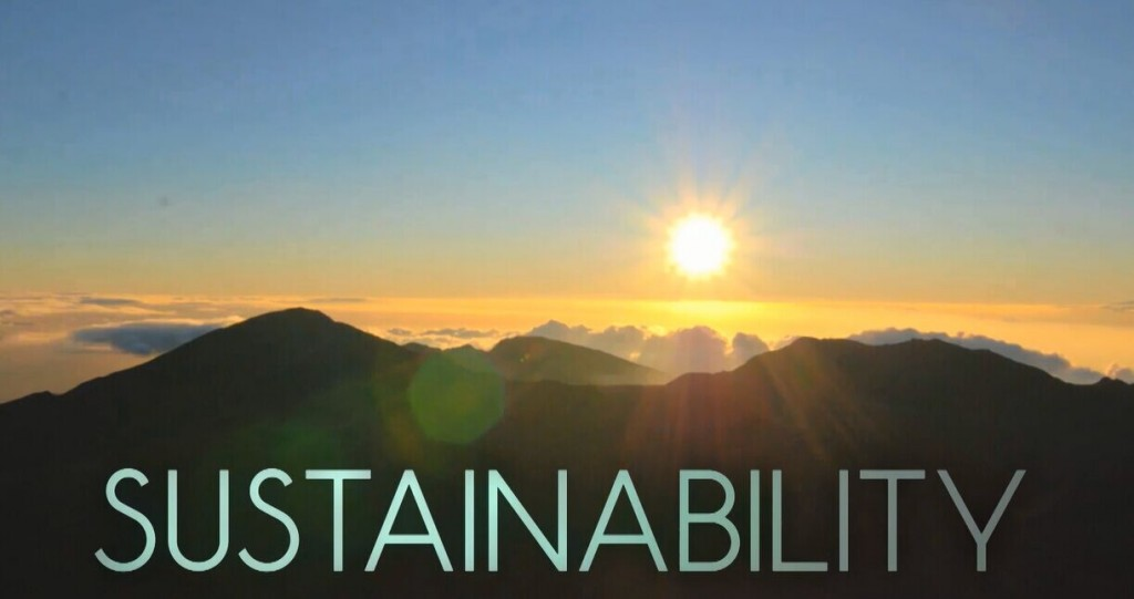 Sustainability of Plastics in Automotive